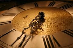 Tempus Fugit (Marcelo Colin) Tags: dourado hora tempo tempus relogio fugit ponteiros
