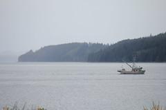 """Russian Trawler"" (lionsgater) Tags: bc sointula"