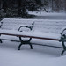 Park Bench in snow