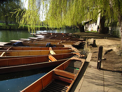 Punts on the Cam (Cold Mountain) Tags: flowers cambridge spring university cam punt