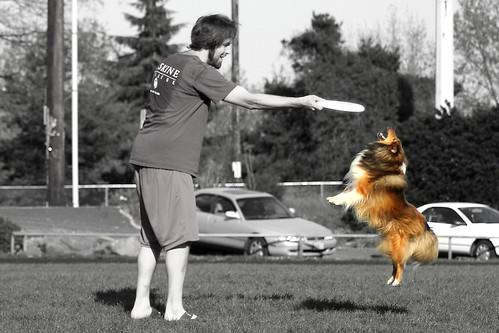 Get It, Lassie