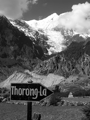 Leading us to Thorong La (5,416 meters)
