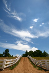 174 - Horse God Shines Down (Universal Stopping Point) Tags: blue sky clouds fence lexington kentucky wideangle pasture 365 project365 kentuckyhorsepark otherwiseunaltered slightlyrotated