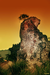 The Rock (Mr. FRANTaStiK) Tags: mountain tree rock philippines batangas quarry mabini platinumphoto fongetz francistan
