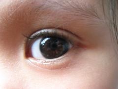Left eye (mang M) Tags: macro closeup canon eyes canonpowershot a570 macrophotosnolimits a570is canona570 570is canona570is powershota570is