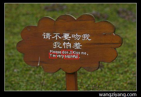 成都公园 - wangziyang.com