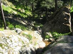 Remontée du ruisseau de Velacu dans la forêt de Velacu