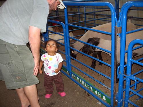 San Mateo County Fair - Aug 08