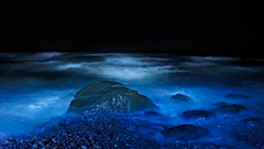 Night Visions of Pacific Ocean Blue (Fort Photo) Tags: ocean park blue light vacation lightpainting beach night painting outdoors evening washington nikon rocks waves nightscape searchthebest pacific northwest nps indigo surreal national shore pacificnorthwest wa olympic olympicnationalpark 169 pnw d300 catchycolorsblue specnature clff 2008reunionnature
