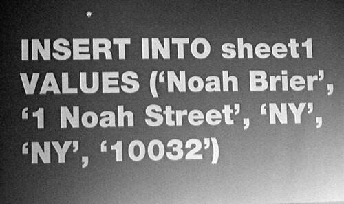 Interesting New York: Noah Brier