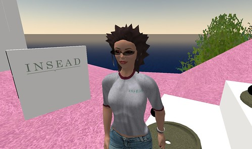 INSEAD in Second Life Sep 08_002
