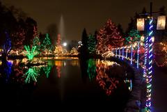 Lake 'O' Lights (Moe W) Tags: christmas trees lake canada water fountain vancouver reflections pond bc poles lantern festivaloflights vandusenbotanicalgardens mauricewoodworth