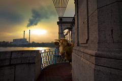 Bestial serie (Aur from Paris) Tags: bridge sunset paris france fog seine photoshop cow raw industrial smoke surreal pont unreal usine vache polution alfortville surraliste aur pontduportlanglais canon5dmkii 5dmarkii