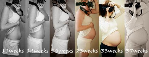 belly progress