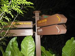 DSCF0063 (algogeek) Tags: singapore nightsafari