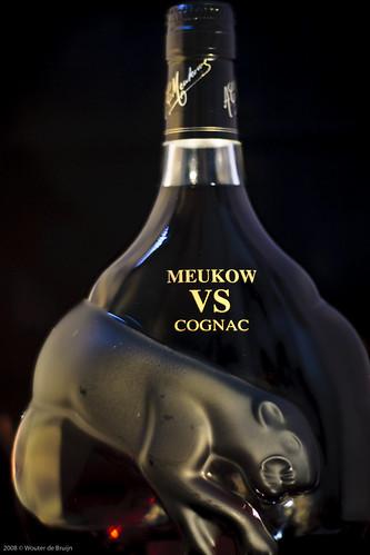 Meukow's famous black panther (1)