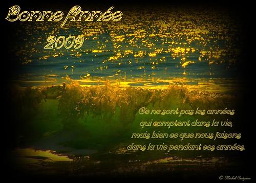 Bonne Année 2009 à tous ! ! !