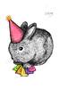 New Years Bunny