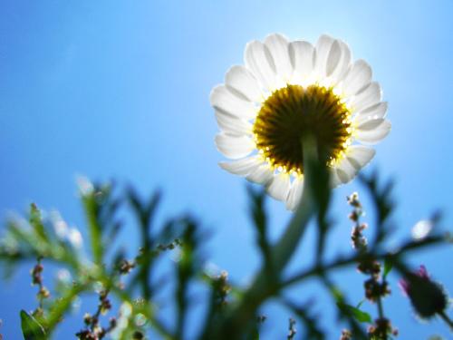 Photo by Hamed Saber: http://www.flickr.com/photos/hamed/