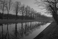 Schwerin, Schlosspark (Q-BEE) Tags: trees winter germany deutschland wasser kanal ge bäume ostsee vorpommern mecklenburg superaplus aplusphoto platinumheartaward