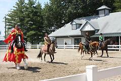 kentukyhorses