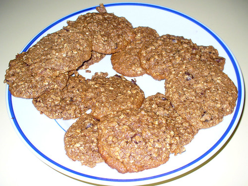 2009-01-19 - Oatmeal Banana Cookies - 0001