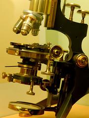 Microscope 10