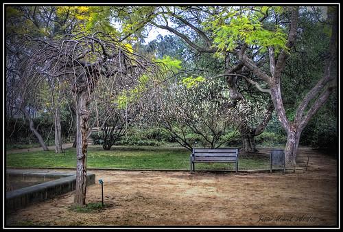 Jardin y Descanso