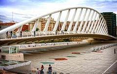 Valencia. Puente de Calatrava (llamado de la peineta) (Angel Villalba) Tags: bridge valencia puente calatrava soe peineta shieldofexcellence theunforgettablepictures