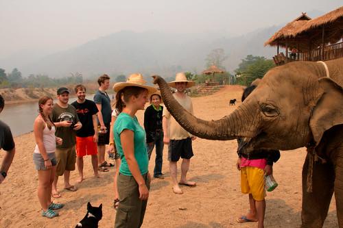 Elephant Nature Park-079
