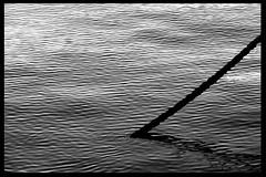 Mare Nostrum #12 - Cano do Mar (RiCArdO JorGe FidALGo) Tags: bw portugal water gua boat barco lisboa sony pb tejo soe belm blueribbonwinner riotejo ancoradouro supershot outstandingshots flickrsbest dsch2 golddragon mywinners abigfave platinumphoto anawesomeshot impressedbeauty flickrplatinum irresistiblebeauty superbmasterpiece diamondclassphotographer flickrdiamond fidalgo72 ysplix amazingamateur excellentphotographerawards theunforgettablepictures betterthangood theperfectphotographer bwartaward ilustrarportugal goldstaraward ricardofidalgo ricardofidalgoakafidalgo72