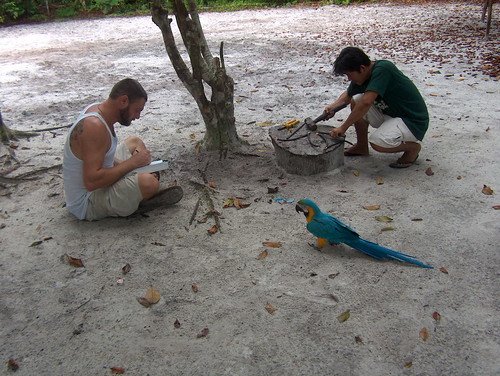Martin & Julio & visitor