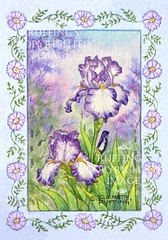 """Purple and White Iris with a Blue Border"" Original Watercolor Painting by Elizabeth Ruffing"