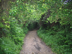 "Dark Trail • <a style=""font-size:0.8em;"" href=""http://www.flickr.com/photos/48277923@N00/2626343158/"" target=""_blank"">View on Flickr</a>"