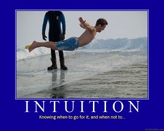 d intuition (dmixo6) Tags: beach funny motivator serious error tide humor wave diving irony despair motivation parody faves mistake demotivator intuition demotivation dmixo6