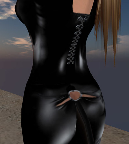 Crimson Shadow - Catsuit back