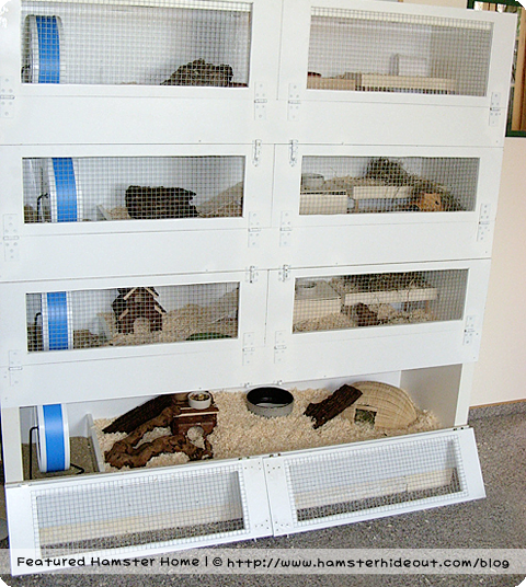 gerbil cages homemade