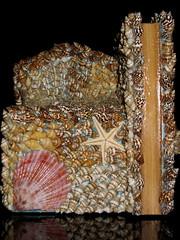 The infront (Aisha Altamimy) Tags: shells art bicycle box crafts arts craft seashell seashellart seaartwork