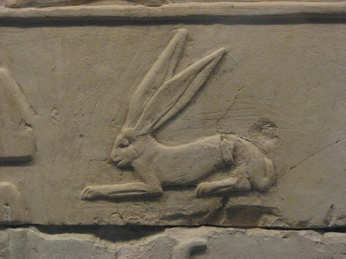 egyptian bunny