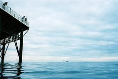 lonely swimmer (lomokev) Tags: sea sky cloud male water silhouette swimming pier ni