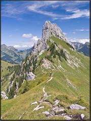 Down the ridge (_dali_) Tags: summer mountains green montagne landscape switzerland hiking border ridge walker fribourg paysage berne randonne romandie gastlosen wandflue