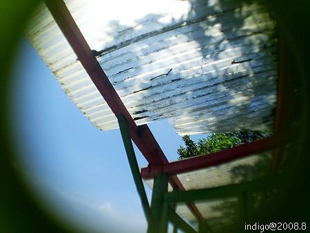 屋頂...? (by indigo@Taiwan)