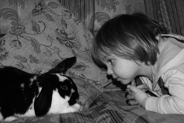 Matilda and Cottontail