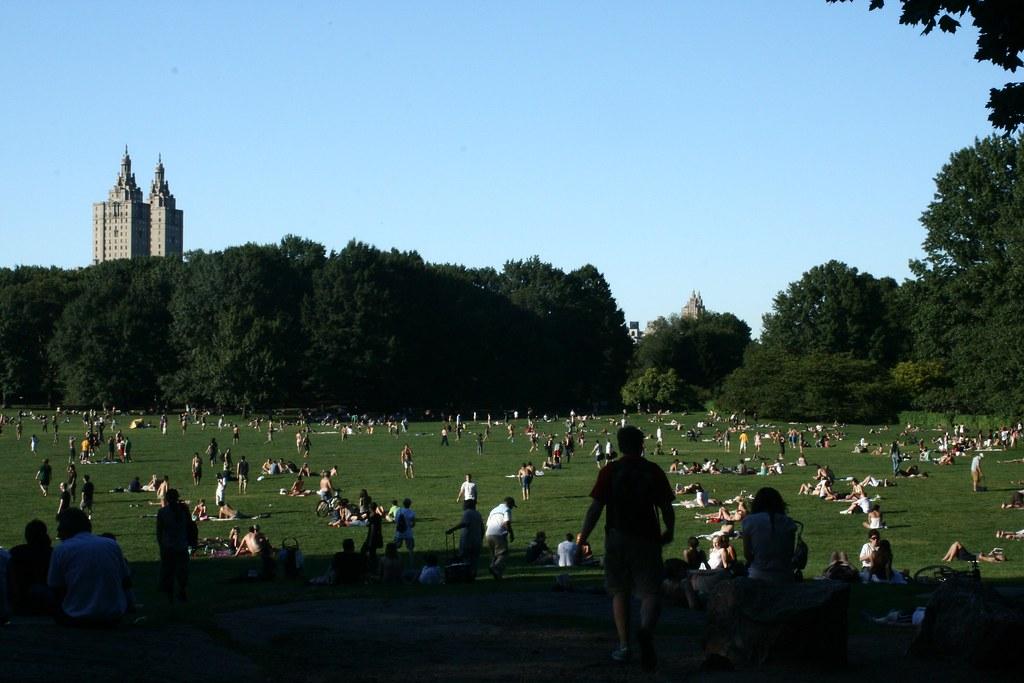 Verão no parque