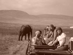 l'elefante è dietro di voi!!! (Hakuna Matata 2008) Tags: alberto lucia michele stefaniab fotobymassimoechiara