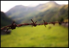 'Cos there's this barrier, Holding me back Away from my dreams. There's this barrier. And this barrier, Is me! (Valentina_A) Tags: music mountain mountains verde green nature canon fence austria rust dof decay scenic natura musica barbedwire barrier poesia sentiero prato montagna barriere monti ruggine tirolo osttirol lienz prati matrei barriera filospinato divisione fabriziodeandr ludovicoeinaudi tearsandrain golddragon 450d anawesomeshot jossaramago overtheexcellence betterthangood 1855is