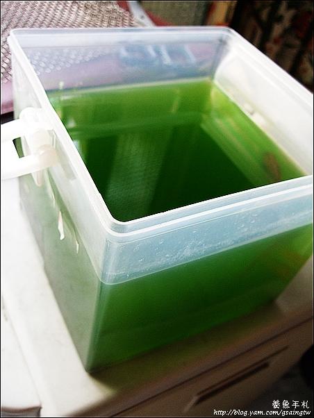 超濃縮綠水-3