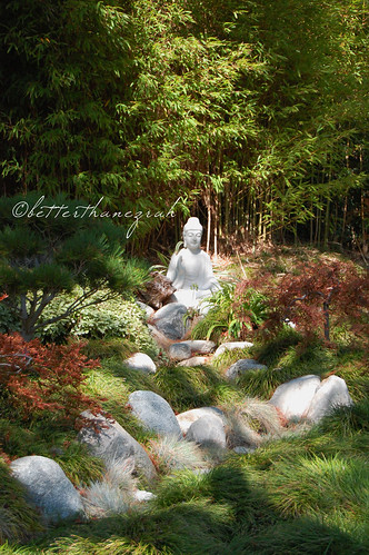 Buddha in the Japanese Garden