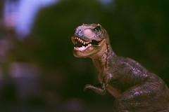 Papo - Tyrannosaurus Rex