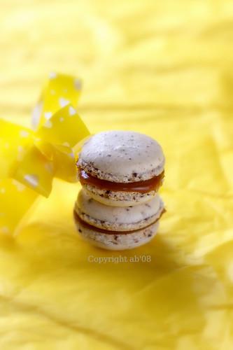 Caramel Fleur de Sel Macarons-2